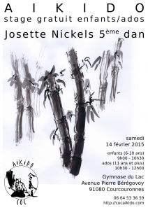 Stage.Josette.Nickels.14-02-2015.Courcouronnes