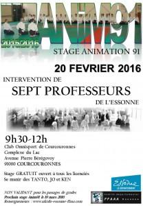 Stage animation 91 dirigé par 7 professeurs de l'Essonne